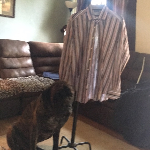 Thomas Dean Other - Men's dress shirt